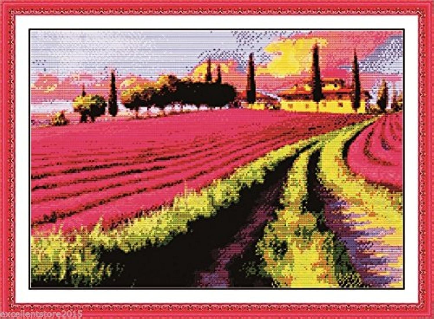 Lavender garden Embroidery Kit Precise Printed Needlework Cross stitch