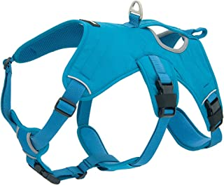 Voyager Padded and Breathable Control Dog Walking Harness for Big/Active Dogs, (Turquoise, Large)