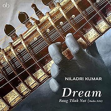 Dream (Raag Tilak Nat) [Radio Edit]