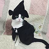 Cute Hooded Cloak Witch/Wizard Halloween Holiday Costume for Small Dogs & Cat Kitten, Cat Costume