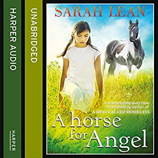 A Horse for Angel cover art