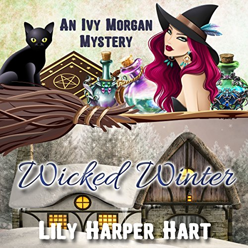 Wicked Winter  By  cover art