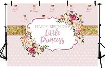 MEHOFOTO Happy Birthday Little Princess Photo Studio Background Props Rosa Floral Dorado Niña Paso y repetir cumpleaños decoraciones Banner fotografía fondos para tartas suministros de mesa 7 x 5 pies