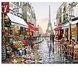 Pintura al óleo Set Regalo Pintura al óleo Por Número - Artes Y Artesanías Para Adultos Pintura Por Números Kits Pintura Por Números Para Niños - París Flor Paisaje Calle