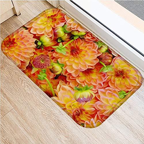 OPLJ INS Flores Antideslizante Felpudo con la aspiradora Cocina baño bedroon alfombras de Piso Alfombra de su casa Entrada Alfombras niños oración 40 * 60cm DD0026 A11 40x60cm
