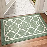 DEXI Dirt Trapper Door Mat 50 x 80 cm,Non-slip Entrance Rug for Indoor and Outdoor,Machine Washable Soft Floor Mat,Super Absorbent Front Door Mat Carpet,Green