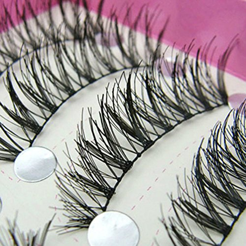 10 Pairs Natural Long False Eyelashes for Beauty by Phoenix b2c