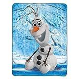 Disney's Frozen, 'Chills and Thrills' Micro Raschel Throw Blanket, 46' x 60', Multi Color
