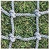 クライミングフィットネスネット、子供の屋外登山ツリーハウス 子供用スイングラダーロープ保護ネット 庭競馬場フェンスセーフティネット 固定貨物ヘビーデッキカーネットをロード 支持力1540ポンド (Size : 6*6M(20*20ft))