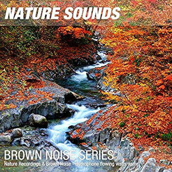 Nature Recordings & Brown Noise - Hydrophone flowing water asmr