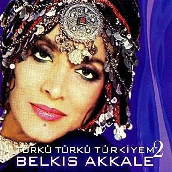 Türkü Türkü Türkiyem, Vol. 2