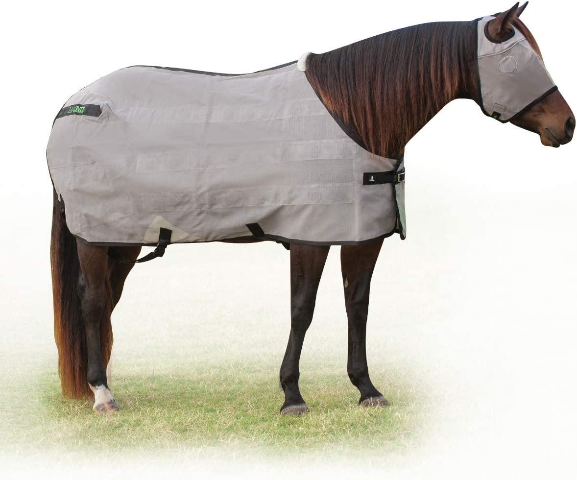 Classic Many popular brands Equine Magntx Fly shop Sheet