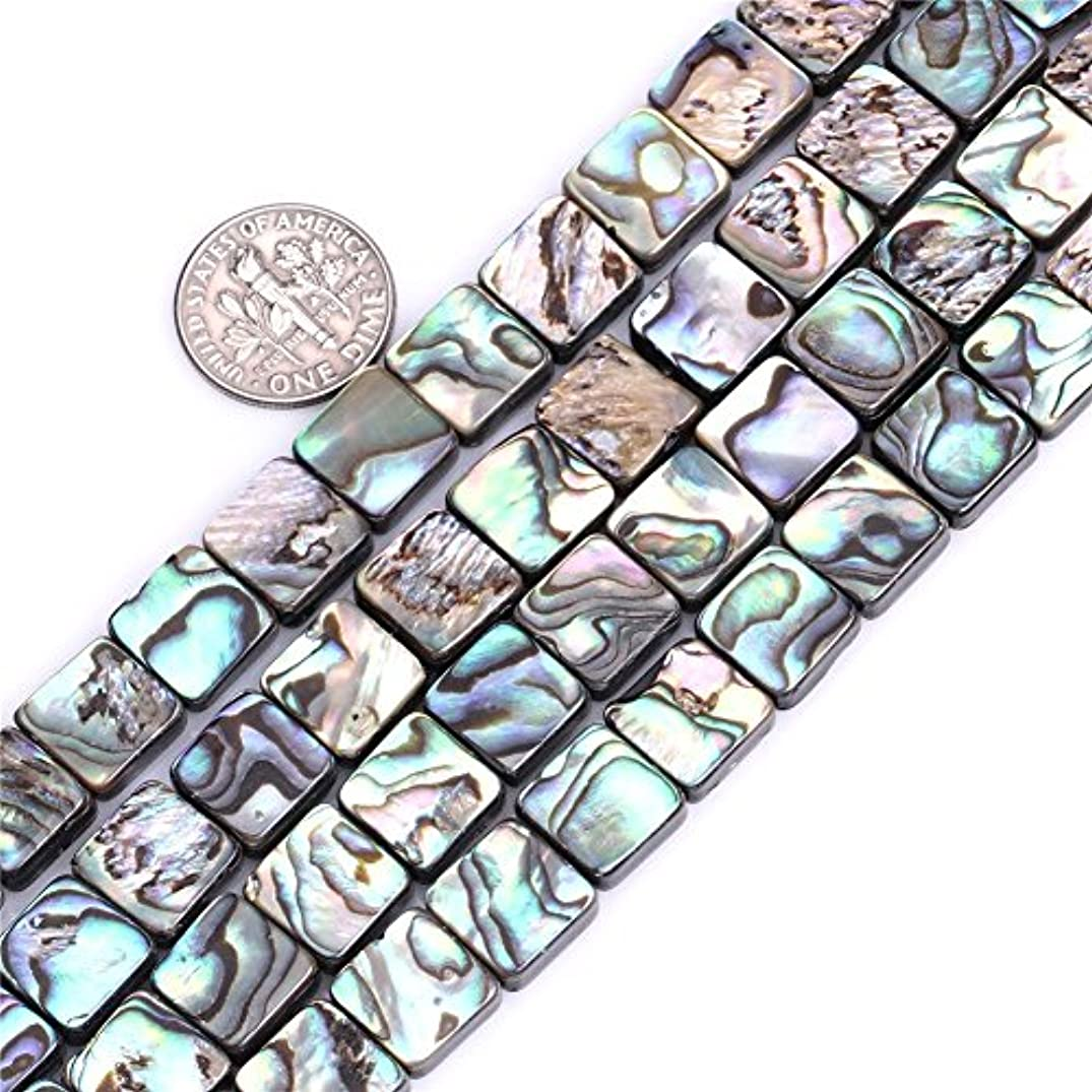 8mm Flat Square Natural abalone Shell Beads Semi Precious Gemstone Beads for Jewelry Making Strand 15 Inch (48pcs)
