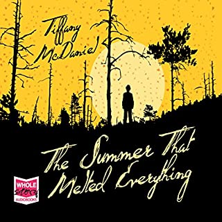 The Summer That Melted Everything cover art