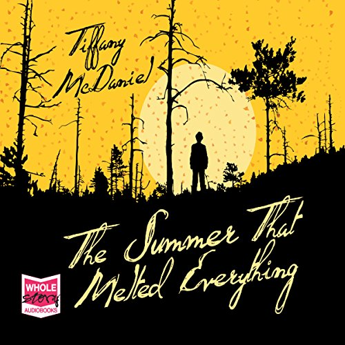 Couverture de The Summer That Melted Everything