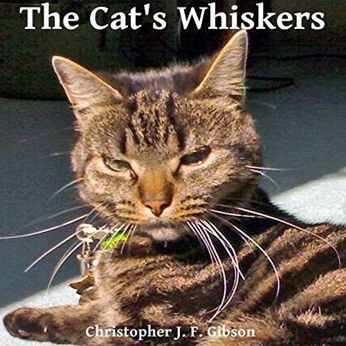The Cat's Whiskers audiobook cover art