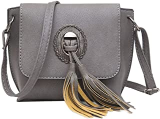 Women's Shoulder Bag, Small Capacity pu Leather Clutch, Retro Crossbody Bag, Tassel Elements, Suitable for Dating, Gifts,Gray