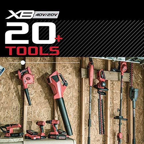 Powerworks PSP301 XB 40V 8-Inch Cordless Polesaw, 2Ah Battery and Charger Included, 8 inch