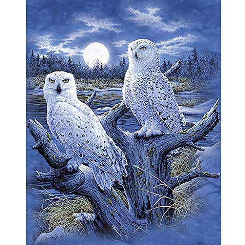 MXJSUA 5d Diamond Painting Kits Full Round Drill Strass Bilder für Home Wall Decor 30x40cm White Owls