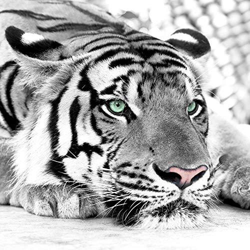 Foto Mural 3D Papel Pintado Tigre Blanco Y Negro Animal Fotomural Entrada Entrada Sala Sofá Tv Fondo Pared Fotomurales Papel De Pared 150 * 105Cm