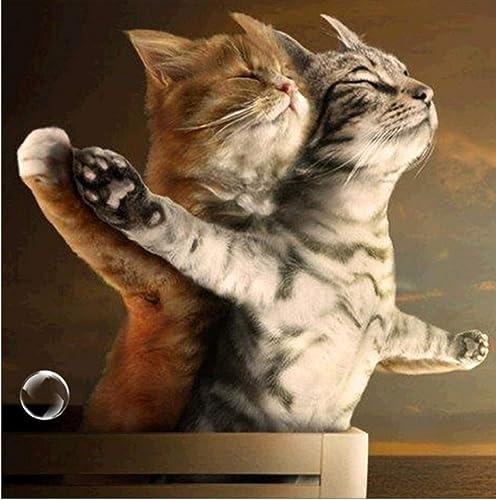 barato en línea XIGZI DIY DIY DIY Diamante Pintura Punto de Cruz Kits de Bordado Animales Gatos Imagen Decoración Regalo Sin Marco  para mayoristas
