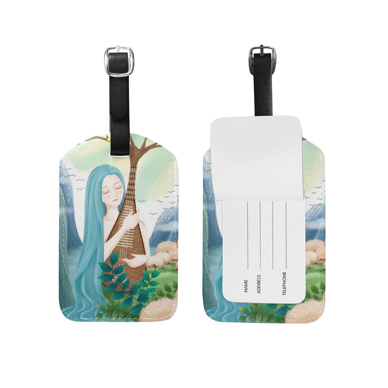 南西歯車聴衆アートウォーターフォールミュージックレディ レザー 荷物 タグ トラベル カード バッグ ID ラベル (2個)