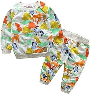 Fairy Baby Kids Boys Dinosaur Clothes Set 2Pcs Long Sleeve Tops Shirt+Pant Outfit Set