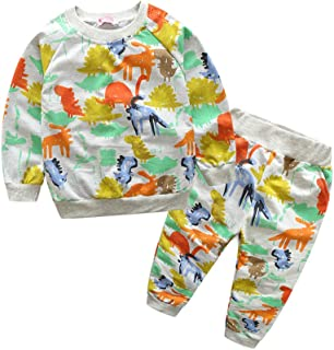 Fairy Baby Kids Boys Dinosaur Clothes Set 2Pcs Long Sleeve Tops Shirt+Pant Outfit Set