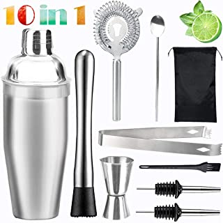 10 in 1 Cocktail Shaker Set, Professional Stainless Steel Martini Drink Muddler, Bartender Barware Tools Kit, Perfect Home Bar Tools for Drink Mixer (19.4Ounce)