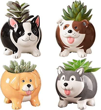 Mini Doggy Succulent Planters