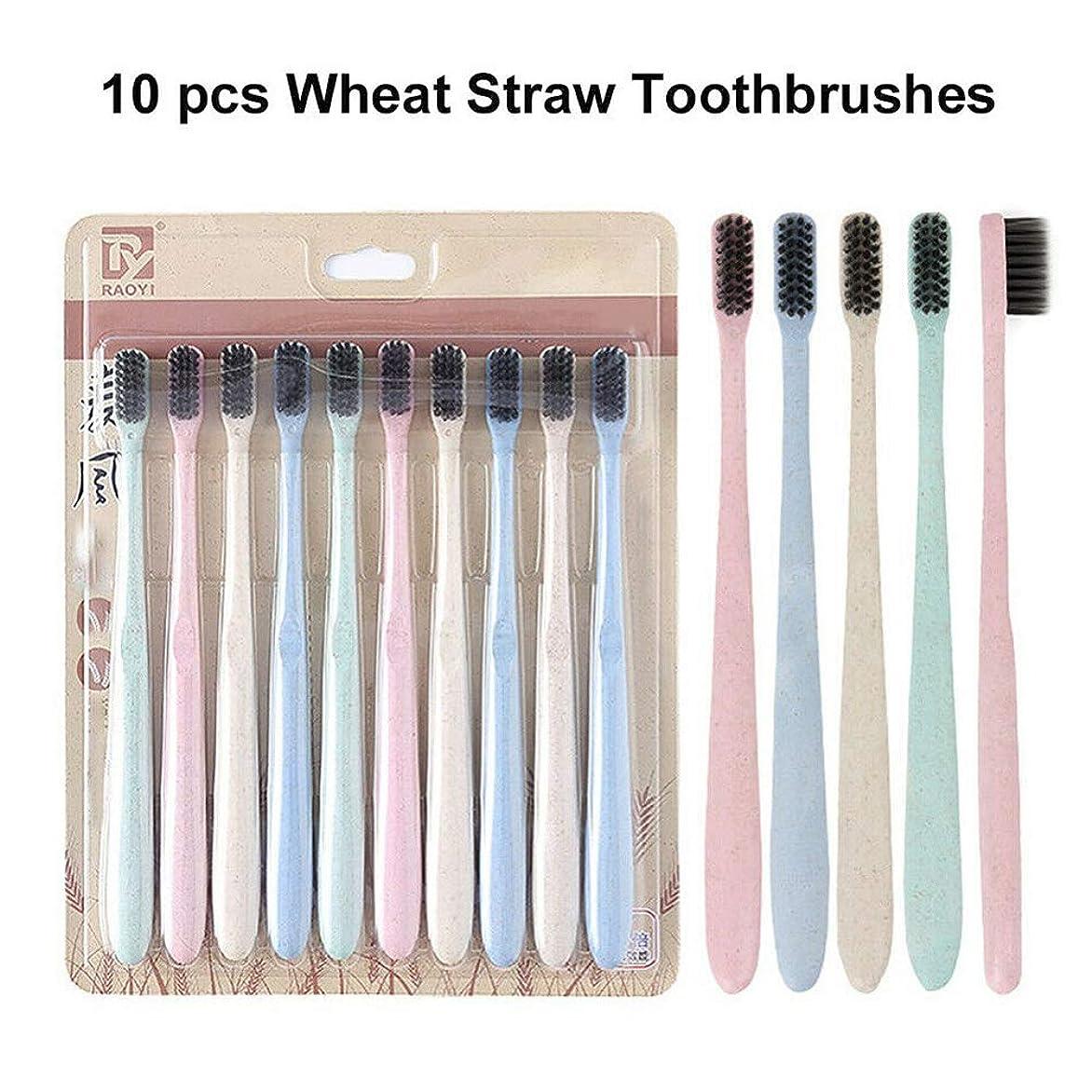 プレビスサイト形現れる10本の自然小麦わらの歯ブラシの柔らかいタケ木炭ブラシの口頭クリーニング (多色)
