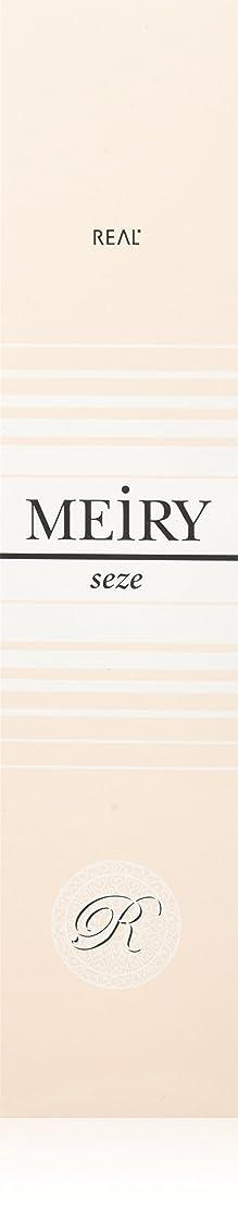 盟主宿泊施設疾患メイリー セゼ(MEiRY seze) ヘアカラー 1剤 90g 4NB