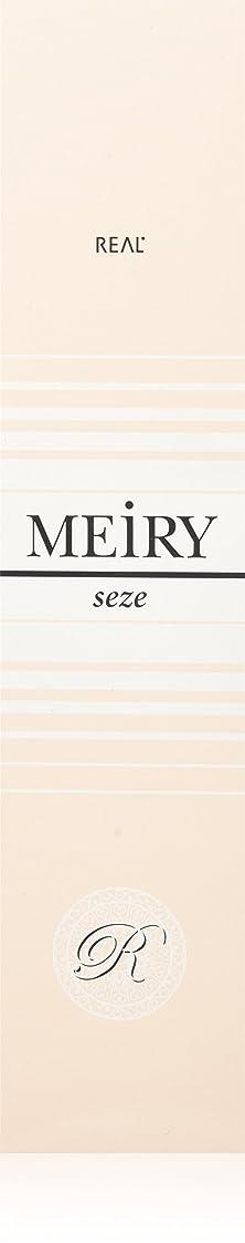 寛容カメ費やすメイリー セゼ(MEiRY seze) ヘアカラー 1剤 90g 4NB