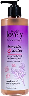 bodycology Free & Lovely Lavender & Amber Wash & Foaming Bath 16 fl oz, pack of 1