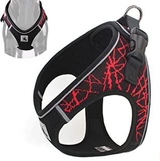 Leepets No Choke Reflective Padded Step in Small Dog Harness Adjustable Stylish Sport Puppy Vest Harness