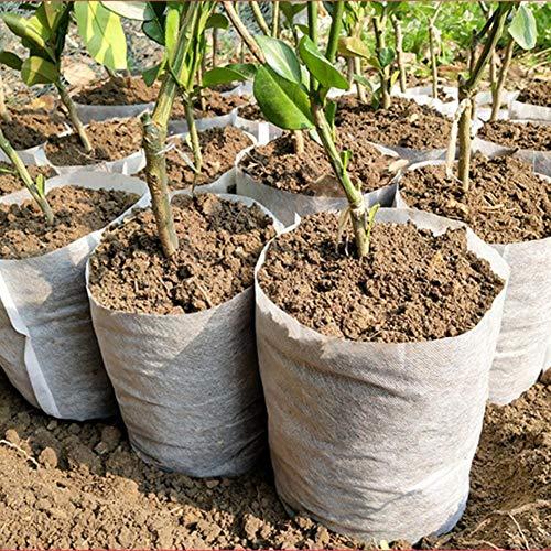 Hete-supply - Confezione da 100 Sacchetti biodegradabili in Tessuto Non Tessuto, per la Coltivazione di Piante, vasi di piantine in Tessuto, per Giardino 18 x 20 cm.