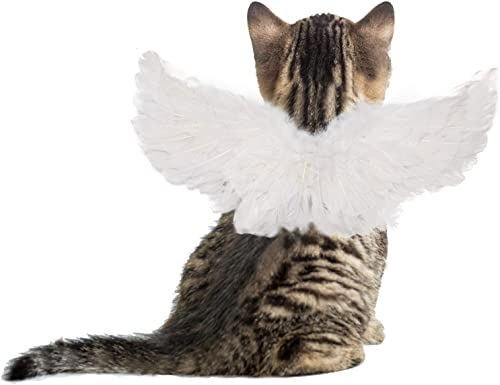 popular iKiKin Pet Wings Halloween outlet online sale Costume, popular Dogs Cats Angle Costume Wings Costume with Hand-Made Feather Dress Up Outfit Cosplay Party Halloween Special Events online sale