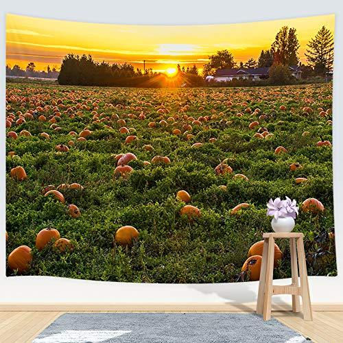 DYNH Tapiz rústico para Colgar en la Pared, diseño de Calabaza, Ideal para el hogar, para el Dormitorio, la Sala de Estar, el Dormitorio Universitario, 203,2 x 152,4 cm