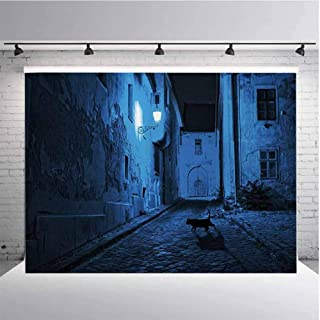 Urban Photography Background Cloth Black Cat Crossing Deserted Street at Night Mysterious Old European Town Alley for Photography,Video and Televison 9ftx6ft Blue Black White