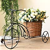 LQQGXL Iron flower stand nostalgic bicycle home garden decoration Ironworks stand with woven basket Flower stand