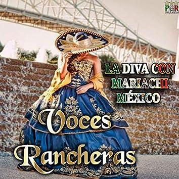 La Diva Con Mariachi Mexico