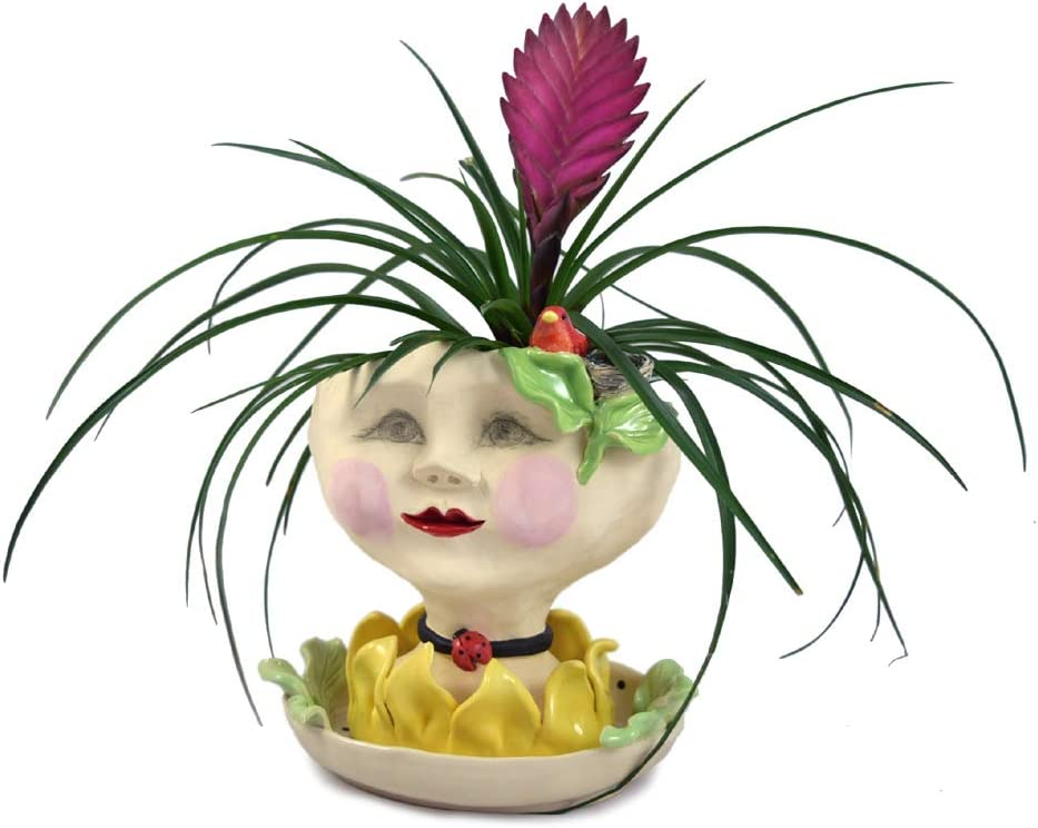 Victorian Lovelies Sculpted Indoor Head latest Ver Very popular Lady Petals Planter:
