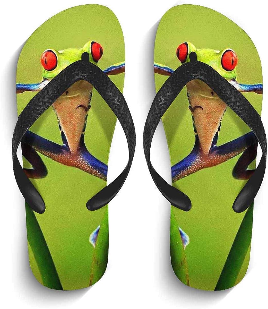InterestPrint Non-Slip Flip Flops Sandal Cute Frog Lightweight Summer Beach Thong Slippers for Men S