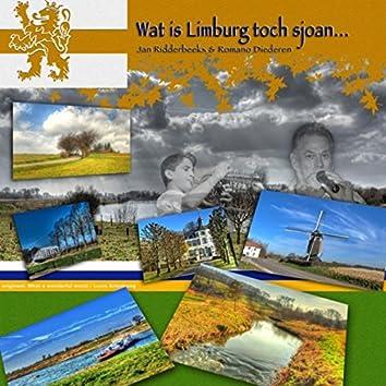 Wat Is Limburg Toch Sjoan