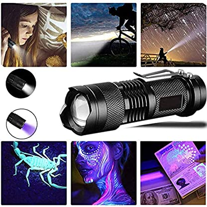 UV Flashlight,LED UV Torch 2 in 1 UV Black Light with High Lumen for Pets Urine & Stains & Bed Bug& Scorpions 3