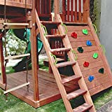 WXking 16 Solicitud de Escalada de Roca para niños con la Escalera de Cuerda Escalada Mango Auxiliar de Escalada y 32 Tornillos de Montaje - empuñaduras de Escalada DIY Rock Stone Wall Rock Rock Rock