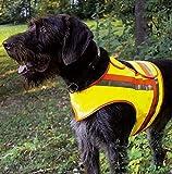 Perros de señal Chaleco reflector Chaleco Chaleco reflectante AKAH de perros salchicha y Terrier
