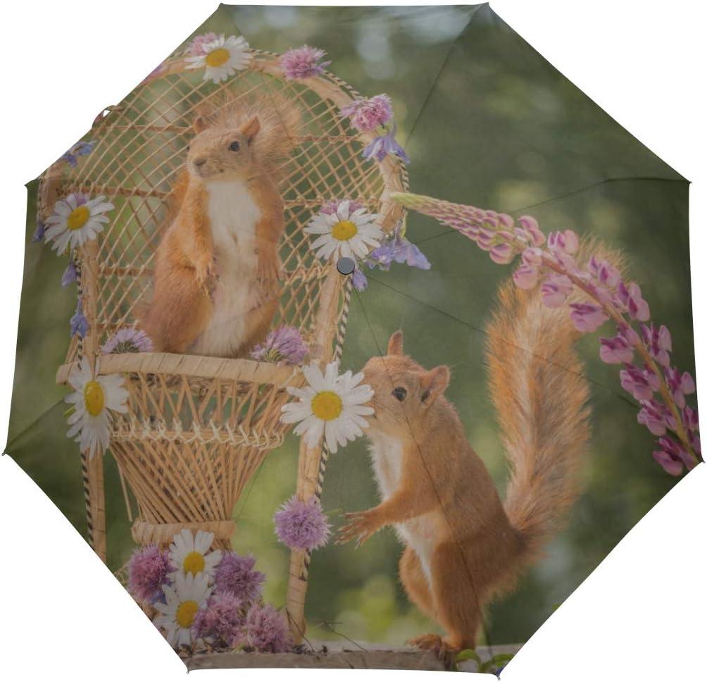 XDCGG [Alternative dealer] Graceful Umbrella For Holiday Squirrel Chair Polye Compact Choice