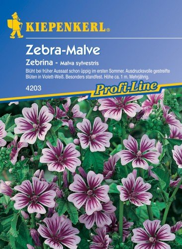 Sperli Blumensamen Malve Zebrina, grün