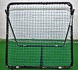 Martin Berrill Sports Gloucester Reflex Response Rebound Net (2 Free Storm Balls)